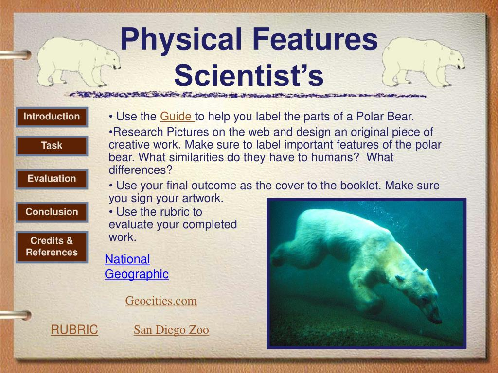 Physical Features Scientist's