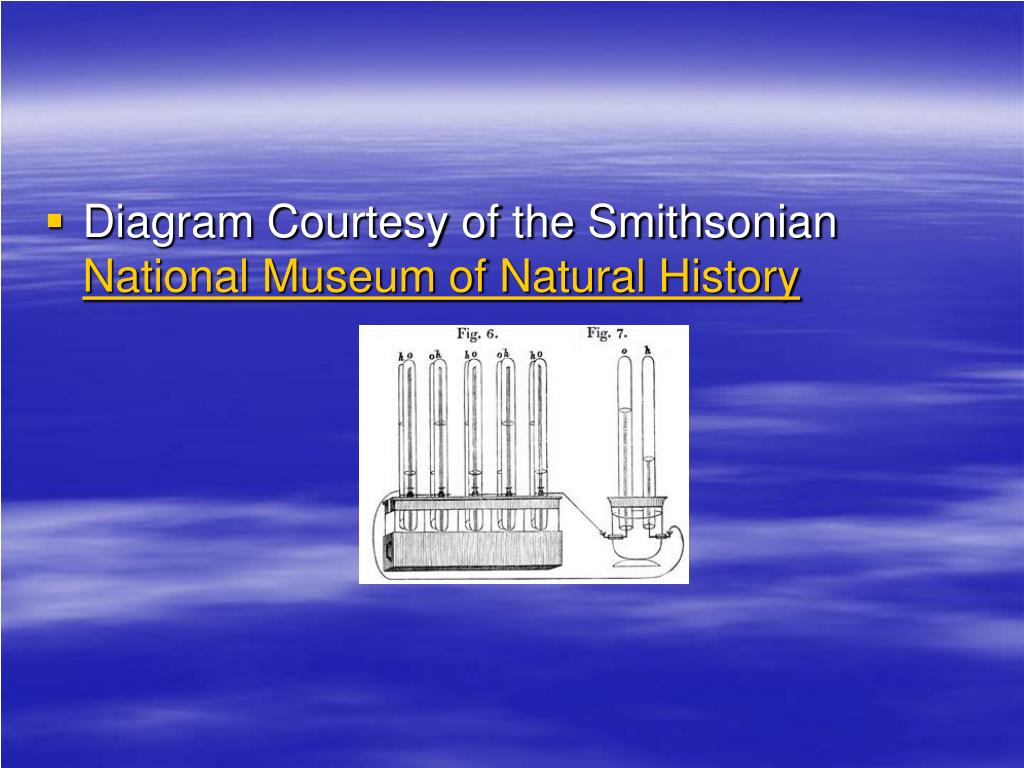 Diagram Courtesy of the Smithsonian