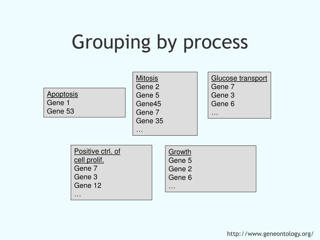 Grouping by process