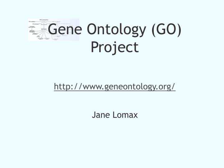 Gene Ontology (GO) Project