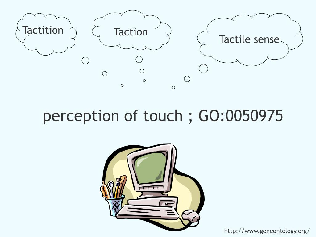 Tactition