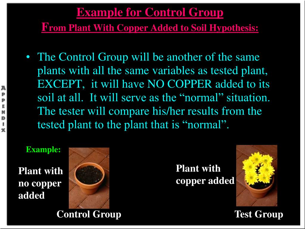 Example for Control Group
