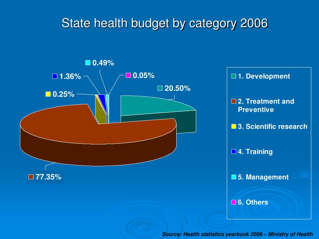 State health budget by category 2006