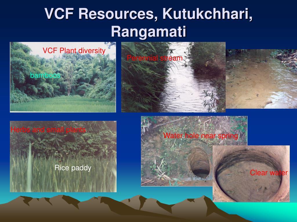 VCF Resources, Kutukchhari, Rangamati