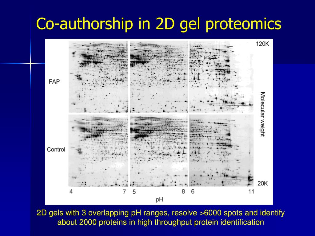 Co-authorship in 2D gel proteomics