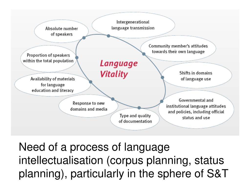 Need of a process of language intellectualisation (corpus planning, status planning), particularly in the sphere of S&T