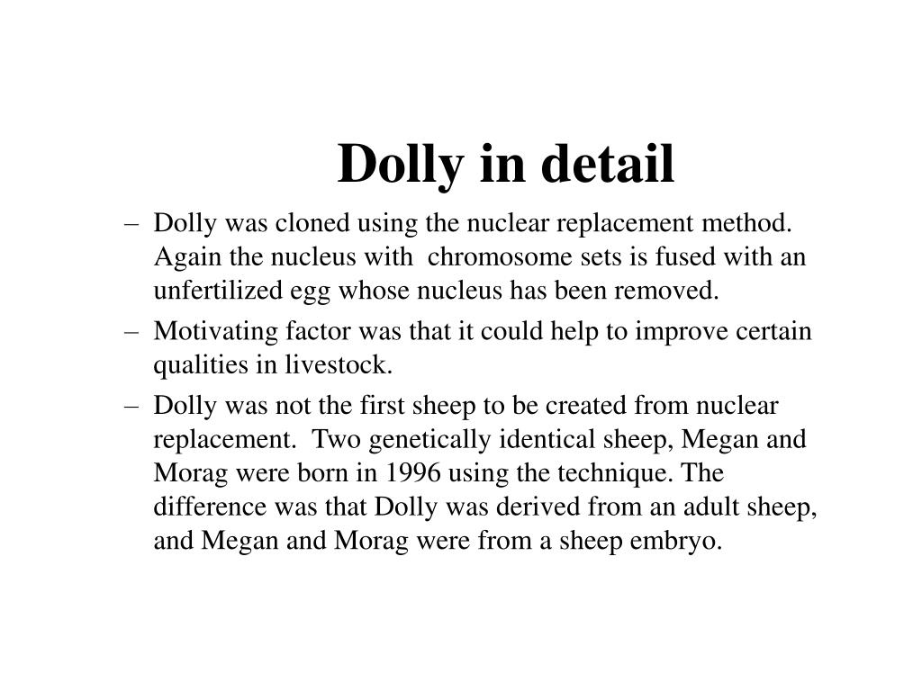 Dolly in detail