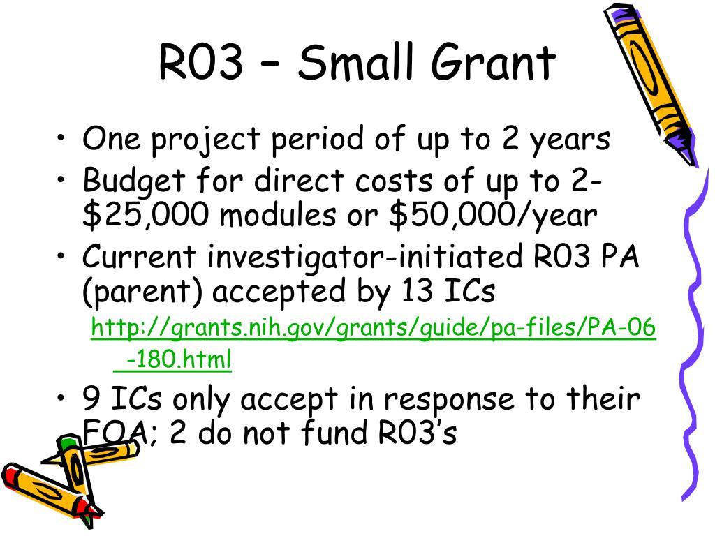 R03 – Small Grant