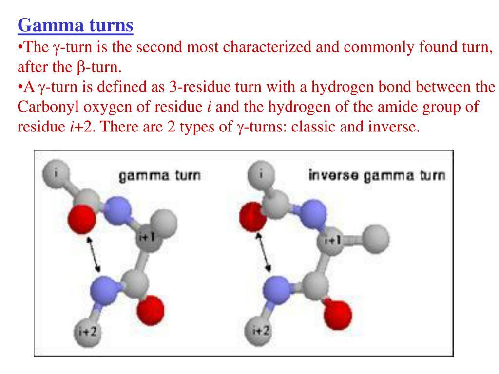 Gamma turns