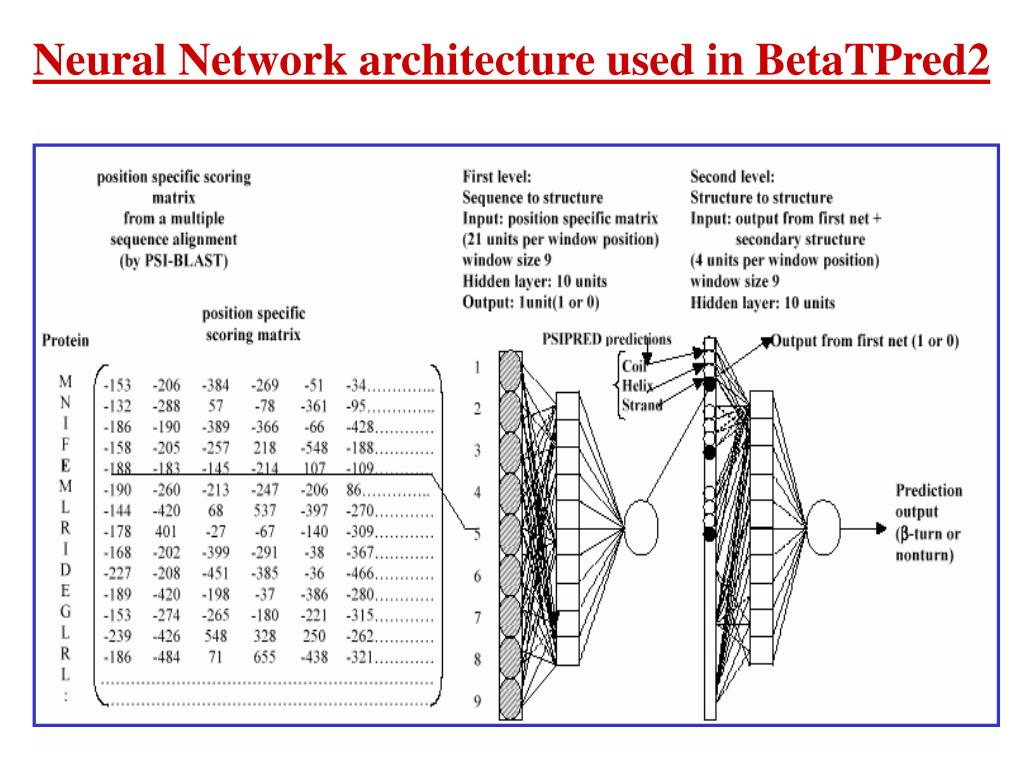 Neural Network architecture used in BetaTPred2