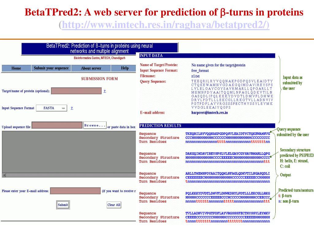 BetaTPred2: A web server for prediction of