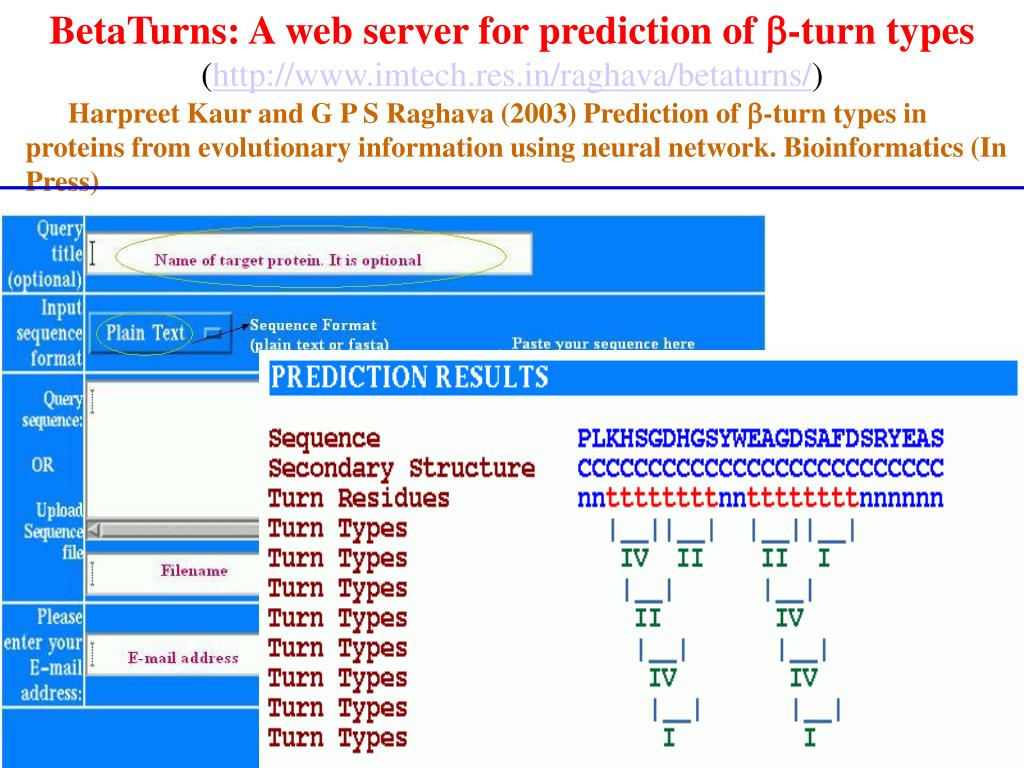 BetaTurns: A web server for prediction of