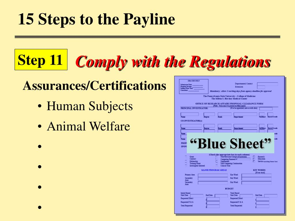 15 Steps to the Payline