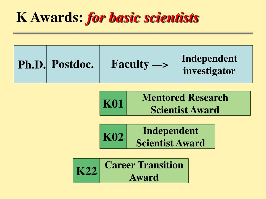 Mentored Research Scientist Award