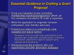 essential guidance in crafting a grant proposal