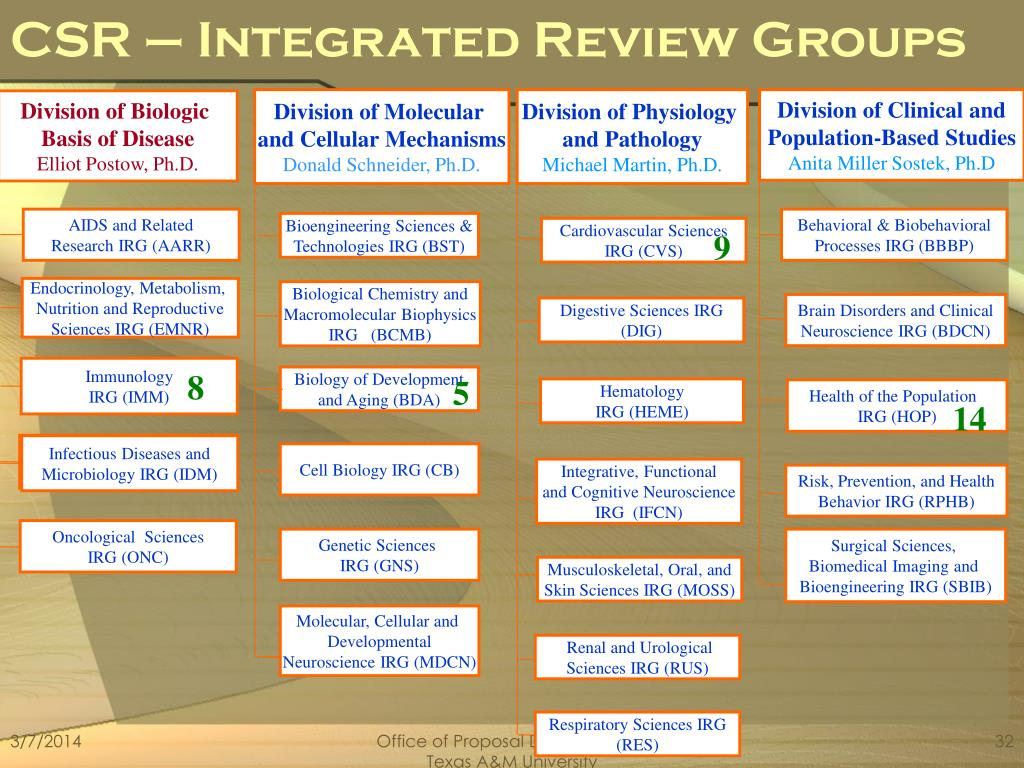 CSR – Integrated Review Groups
