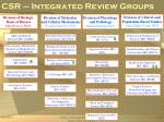 csr integrated review groups