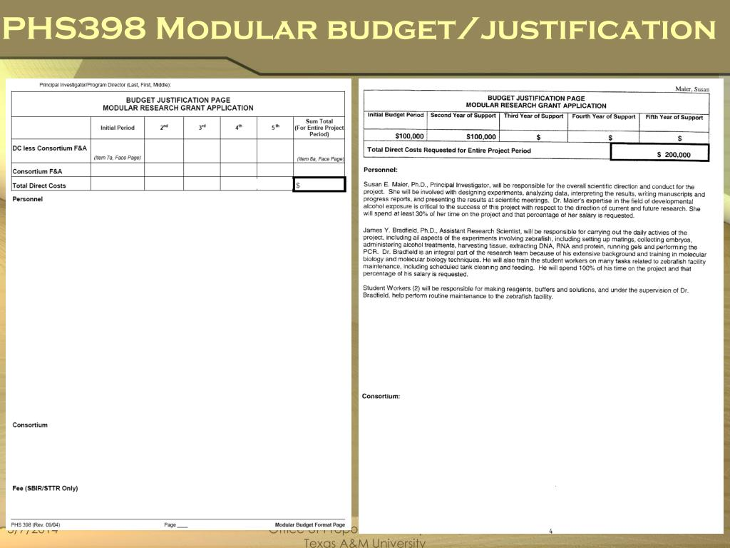 PHS398 Modular budget/justification