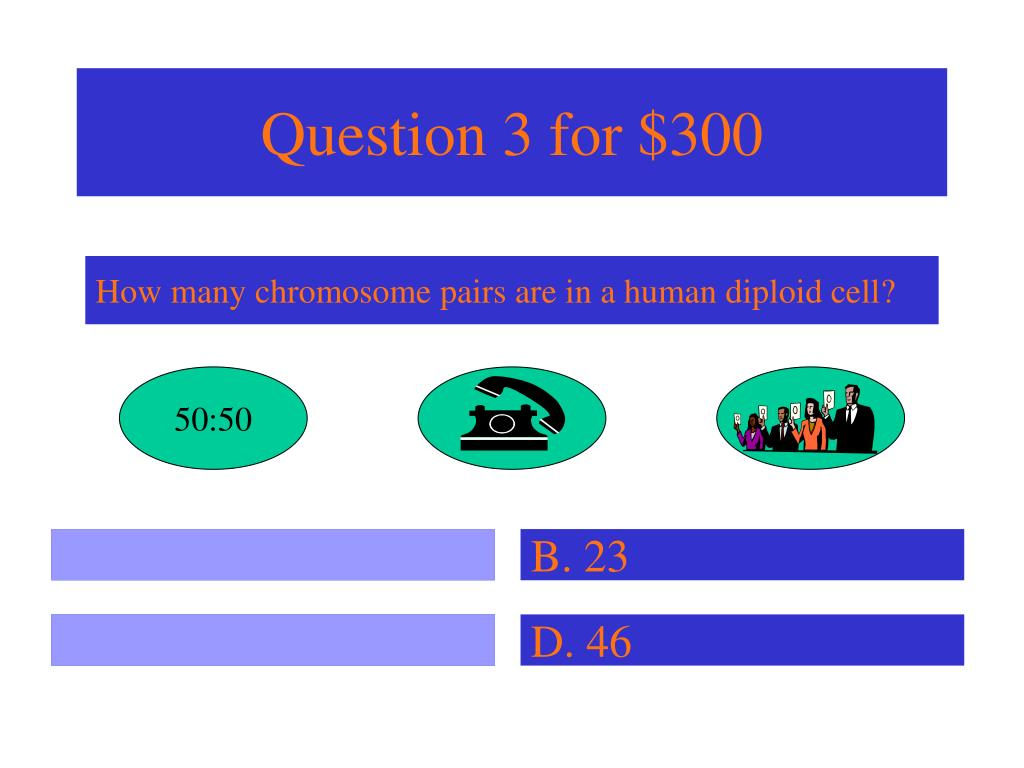 Question 3 for $300