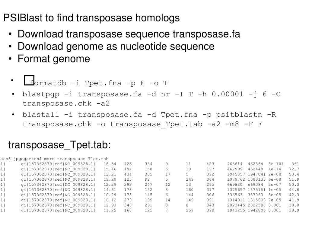 PSIBlast to find transposase homologs