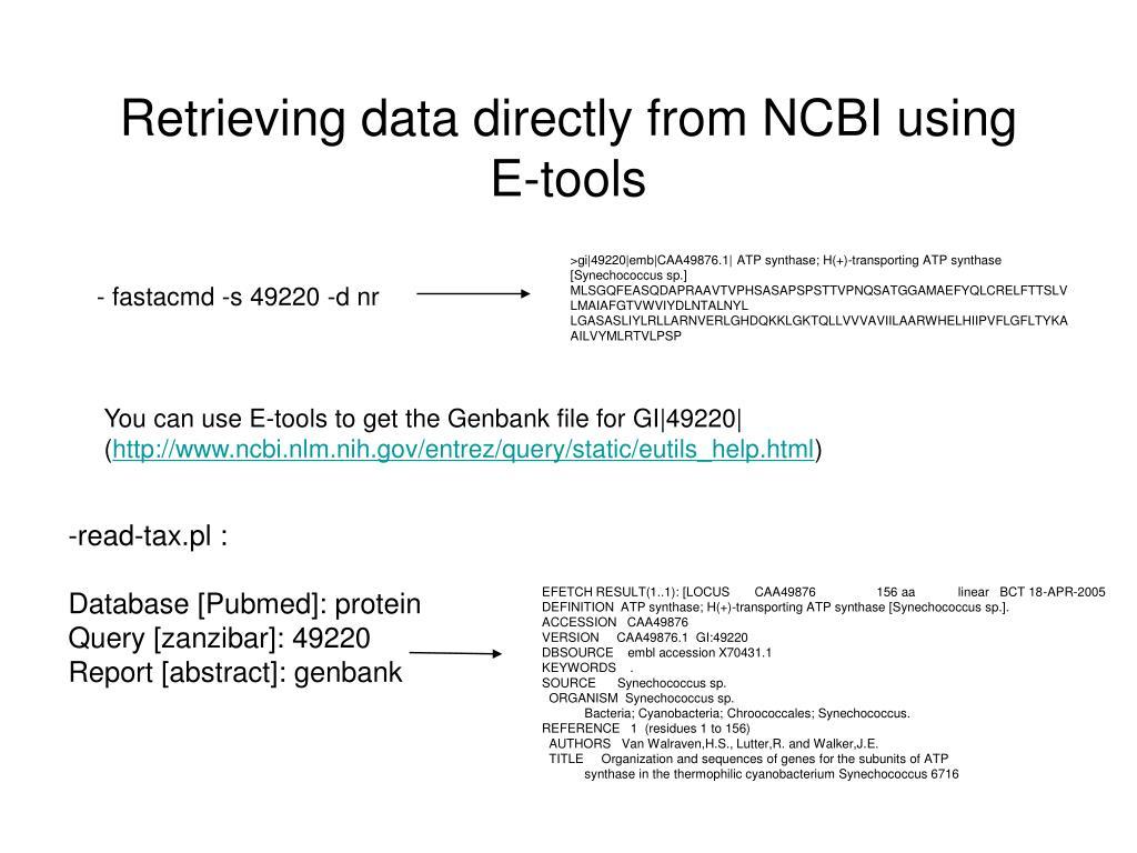 Retrieving data directly from NCBI using E-tools