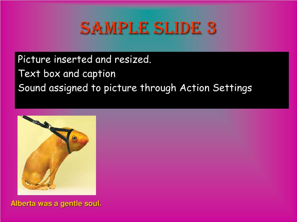 Sample slide 3