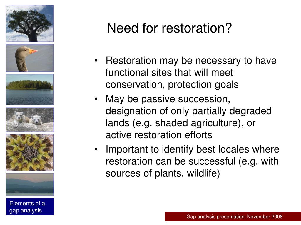 Need for restoration?