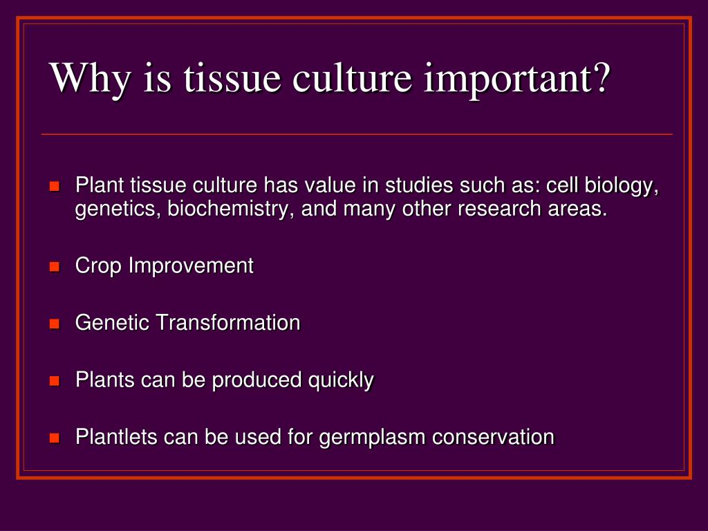 Why is tissue culture important?