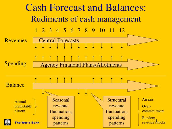 Cash Forecast and Balances:
