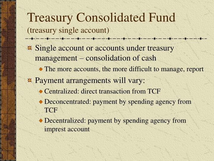 Treasury Consolidated Fund