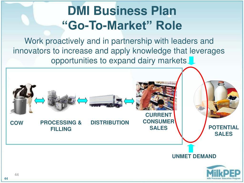 DMI Business Plan