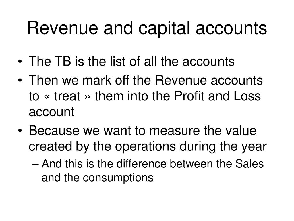 Revenue and capital accounts