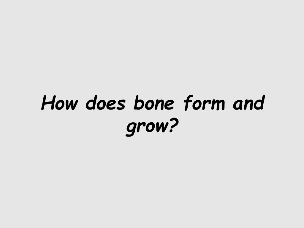 How does bone form and grow?