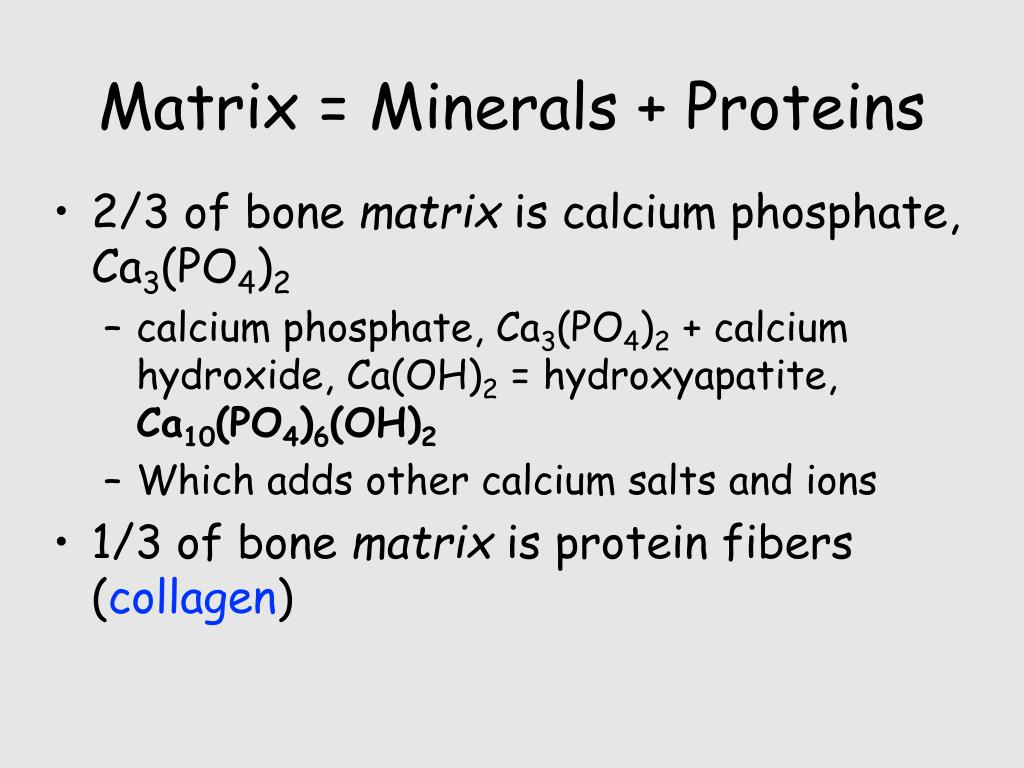 Matrix = Minerals + Proteins
