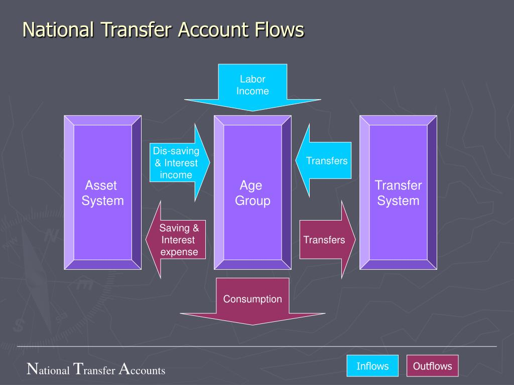 National Transfer Account Flows