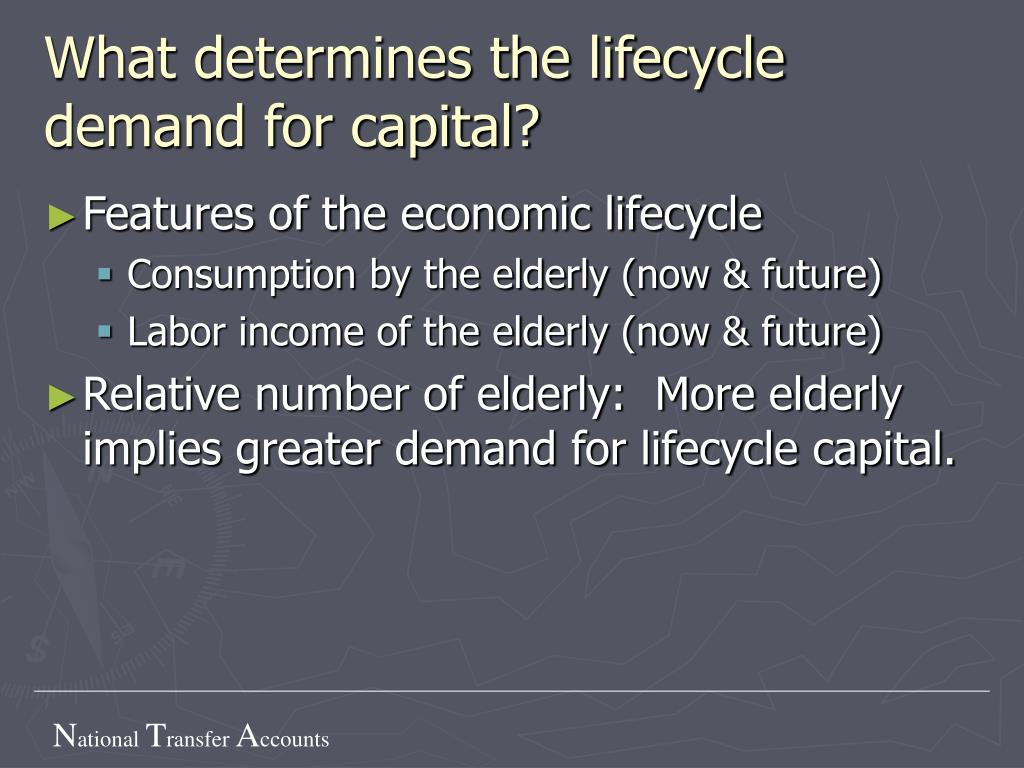 What determines the lifecycle demand for capital?