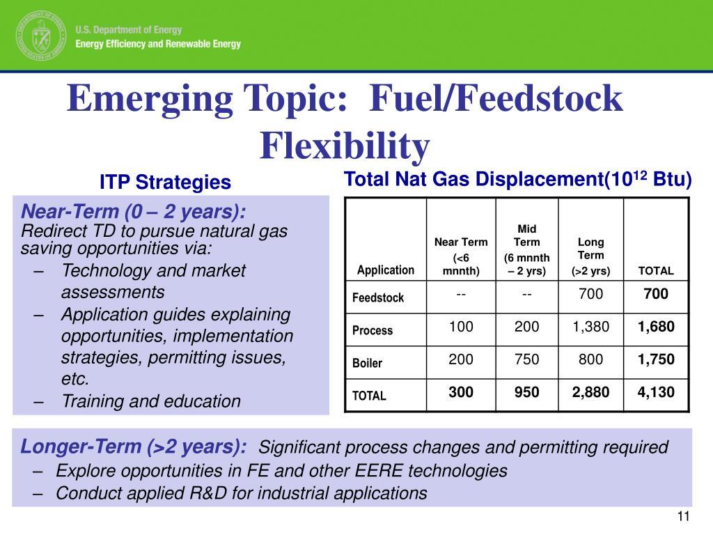 Emerging Topic:  Fuel/Feedstock Flexibility