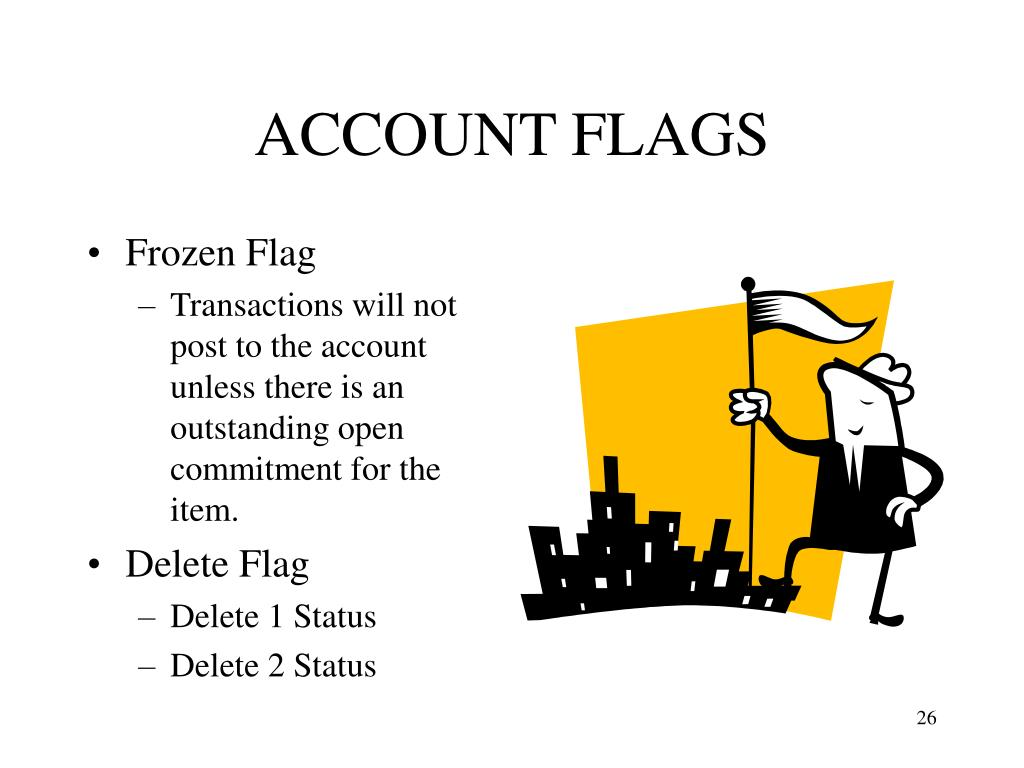 ACCOUNT FLAGS