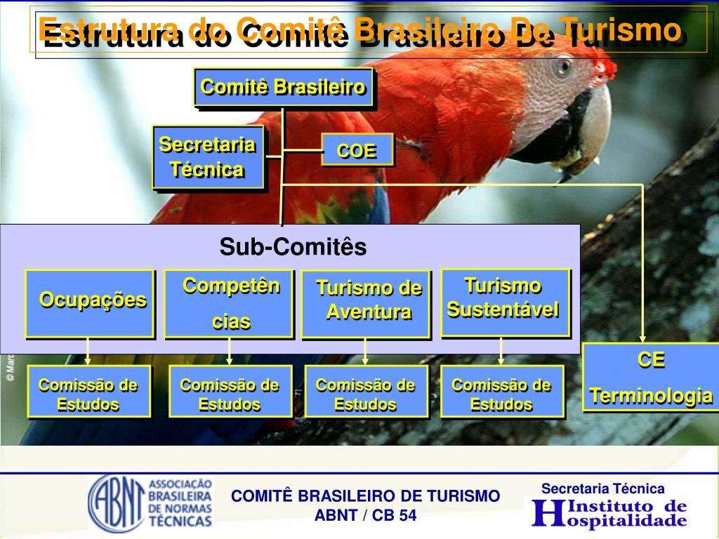 Estrutura do Comitê Brasileiro De Turismo