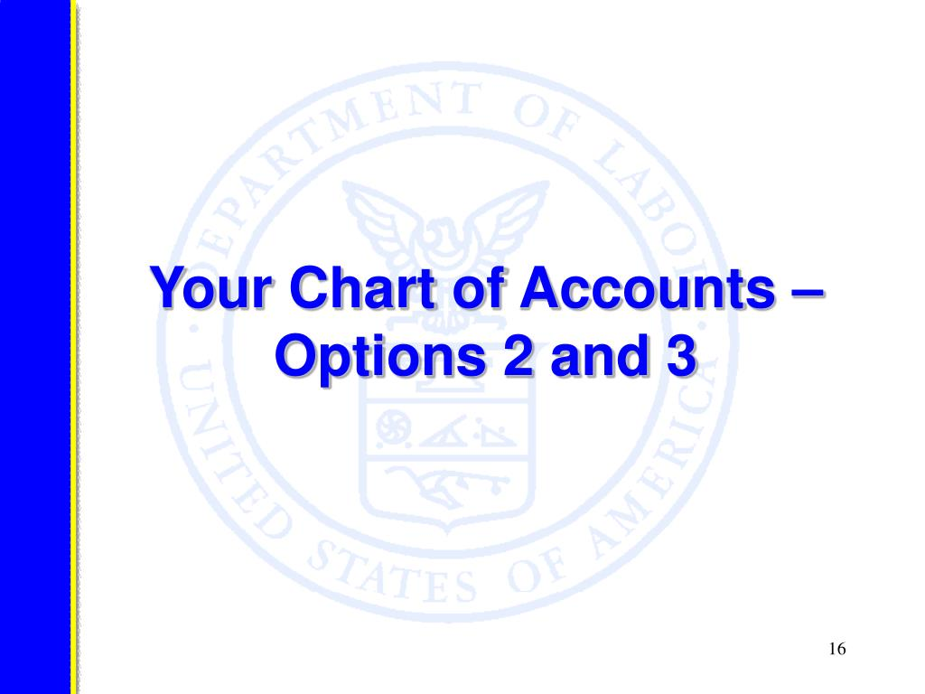 Your Chart of Accounts – Options 2 and 3
