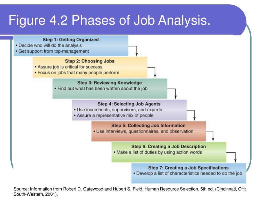 Figure 4.2 Phases of Job Analysis.