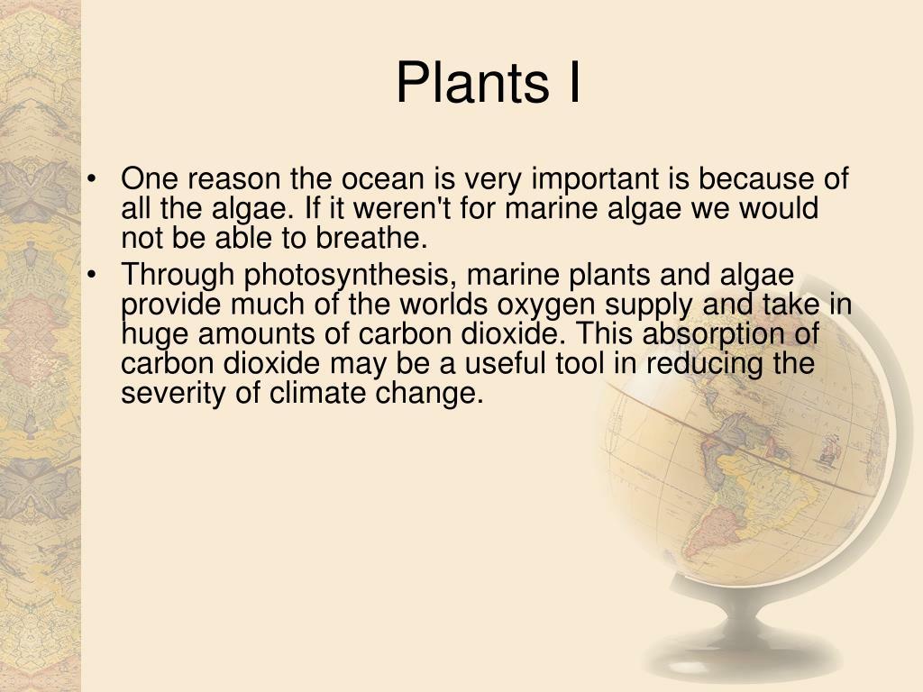 Plants I