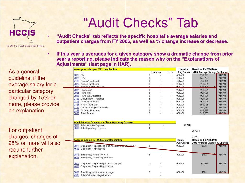 """Audit Checks"" Tab"