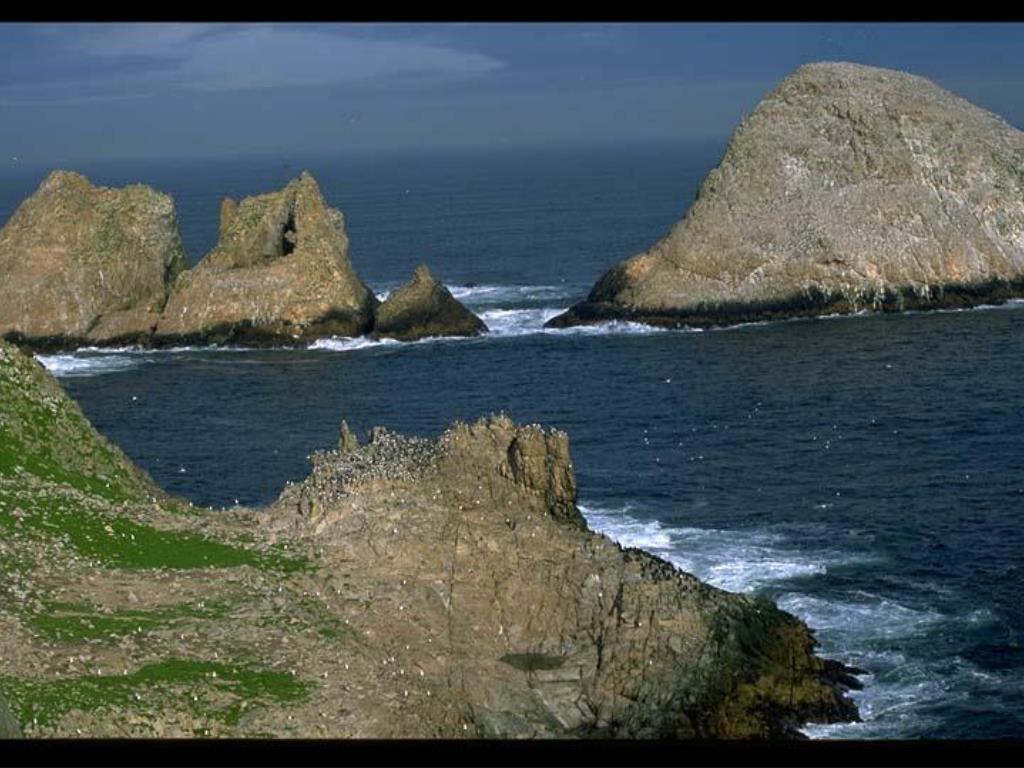 2. Farallon Islands