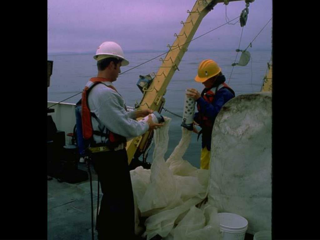 33. Plankton Nets on Research Cruise