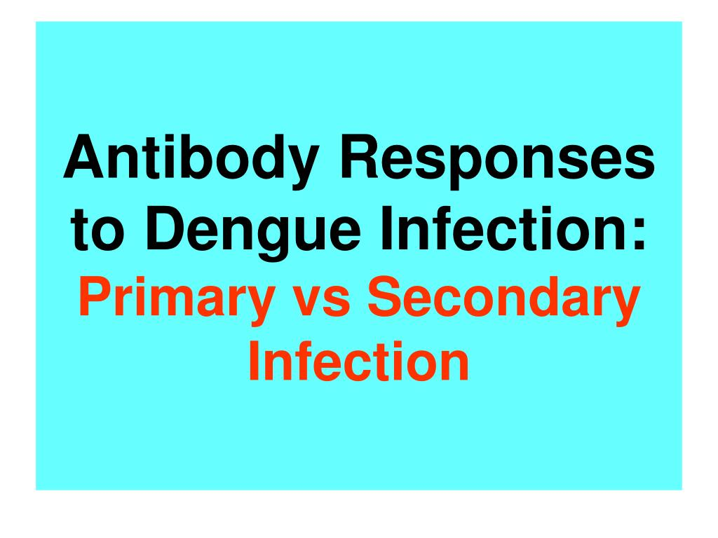Antibody Responses to Dengue Infection: