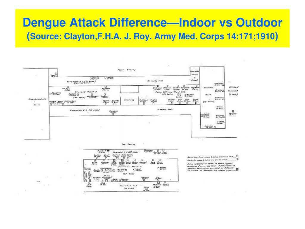 Dengue Attack Difference—Indoor vs Outdoor