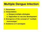 multiple dengue infection