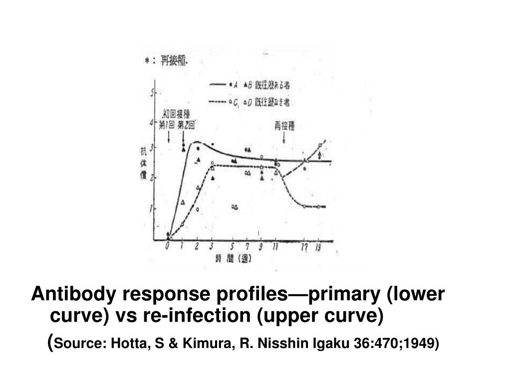 Antibody response profiles—primary (lower curve) vs re-infection (upper curve)