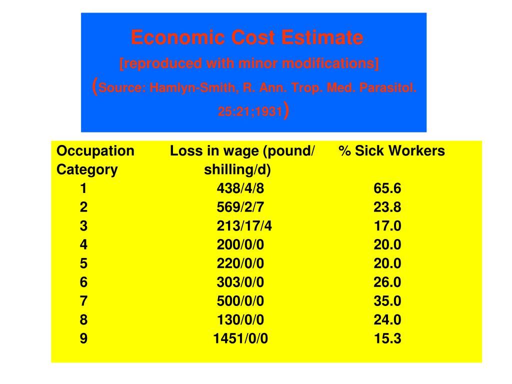 Economic Cost Estimate